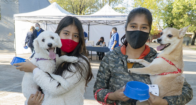 San Isidro: dónde vacunar mascotas esta semana
